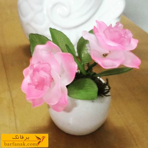 عکس گل کریستالی
