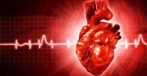 بیماری عروق قلب